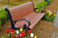 与郁金香的公园长椅 免版税库存照片