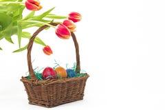与郁金香的复活节篮子 免版税图库摄影
