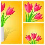 与郁金香的春天背景 库存图片