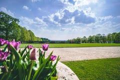 与郁金香的英国春天庭院视图 库存照片