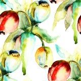 与郁金香花的无缝的样式 图库摄影