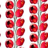 与郁金香花的无缝的样式 库存图片
