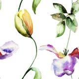 与郁金香花的无缝的样式 库存照片