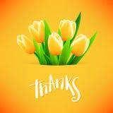 与郁金香花的美丽的卡片 库存照片