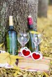 与酒瓶、玻璃和书-浪漫日期的秋天野餐 库存图片