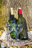 与酒瓶和玻璃-浪漫日期的秋天野餐 库存照片