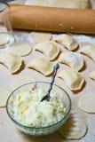 与酸奶干酪和土豆装填的未加工的饺子 免版税库存图片