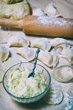 与酸奶干酪和土豆装填的未加工的饺子 库存照片