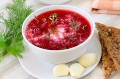 与酸性稀奶油和莳萝的红色罗宋汤 免版税库存图片