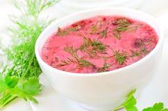 与酸性稀奶油和莳萝的红色罗宋汤 库存照片