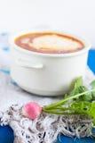 与酸性稀奶油和萝卜的蔬菜汤 免版税库存图片