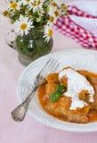 与酸性稀奶油的白菜卷在一块白色板材 免版税库存图片