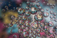 与里面五颜六色的花的水泡影 免版税库存图片