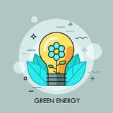 与里面开花的花的电灯泡它和叶子 绿色能量,生态上友好的清洁工艺的概念 库存图片