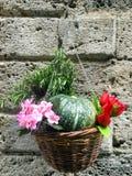 与里面花、果子和迷迭香垂悬的一个柳条筐 免版税库存图片
