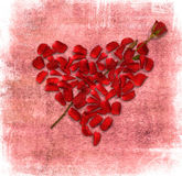 与重点的Grunge背景由玫瑰花瓣制成 免版税库存图片