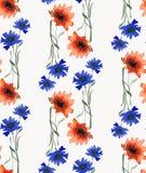 与野生桔子和蓝色花和绿色分支美丽的垂直的诗歌选的水彩无缝的样式在白色backgrou 免版税库存图片