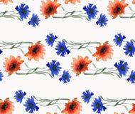 与野生桔子和蓝色花美丽的水平的诗歌选的水彩无缝的样式在白色背景 库存图片