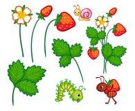 与野生植物的传染媒介汇集 免版税库存照片
