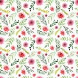 与野花和叶子的水彩花卉无缝的纹理 免版税库存图片