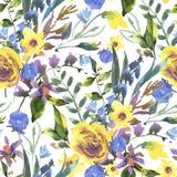 与野花的葡萄酒水彩花卉无缝的样式 皇族释放例证