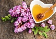 与金合欢开花的蜂蜜 免版税图库摄影