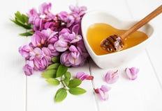 与金合欢开花的蜂蜜 图库摄影