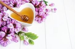 与金合欢开花的蜂蜜 免版税库存图片