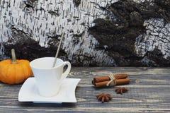 与金属匙子、桂香、八角和明亮的橙色装饰南瓜的专属白色瓷咖啡对反对 库存图片