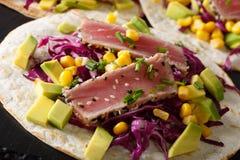 与金枪鱼、红叶卷心菜、玉米、鲕梨和葱macr的鱼肉玉米卷 库存图片