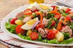 与金枪鱼、蕃茄、土豆和葱的沙拉 免版税库存照片