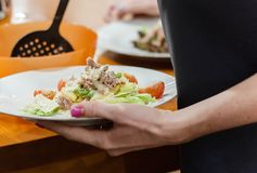 与金枪鱼、西红柿和鸡蛋的健康夏天沙拉,偷猎在上面 免版税库存照片