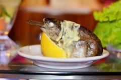 与金枪鱼和柠檬的开胃菜 库存图片