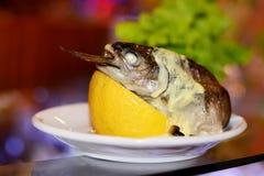 与金枪鱼和柠檬的开胃菜 免版税库存照片