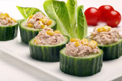 与金枪鱼和玉米的开胃菜黄瓜在白色背景 库存照片