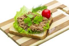 与金枪鱼的三明治 库存照片