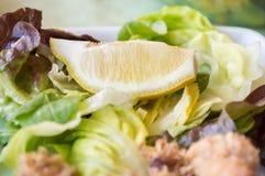 与金枪鱼的沙拉 库存照片