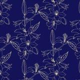与金花的无缝的样式在蓝色背景 lilia 库存例证