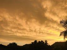 与金黄云彩的日落在斯里兰卡 图库摄影