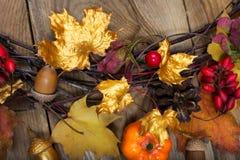 与金黄和五颜六色的槭树叶子的秋天背景 库存图片