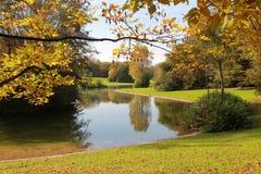 与金黄叶子和一点池塘的秋季公园风景 库存照片