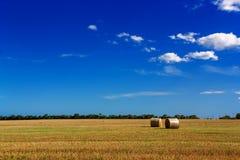 与金黄秸杆大包的农村风景 免版税图库摄影
