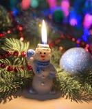 与针叶树和装饰的滑稽的雪人 免版税库存图片