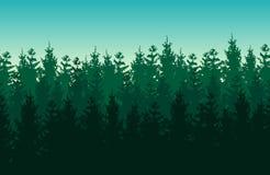 与针叶树的无缝的绿色传染媒介森林风景 库存图片