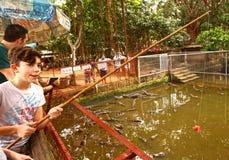 与钓鱼竿的青少年的旅游男孩饲料鳄鱼 免版税图库摄影