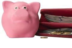 与钱包的桃红色贪心猪有很多金钱 库存图片
