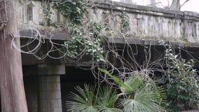 与铁丝网的老楼梯栏杆 股票录像