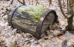 与铁外缘的老木桶,打破和腐烂,在干燥叶子的秋天森林里在 库存图片