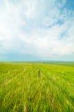 与铁篱芭的Ulagai干草原 库存照片