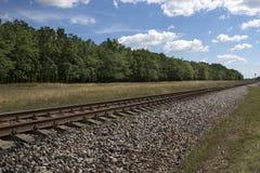 与铁路和橡木树丛的夏天风景 免版税库存照片